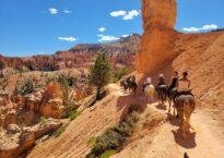 Horseback into Bryce Canyon