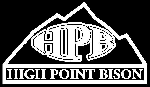 High Point Bison