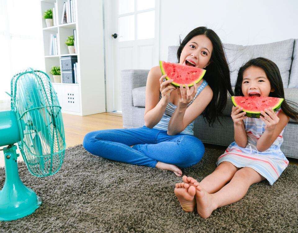 Reduce Indoor Humidity