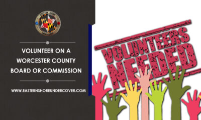 Worcester County Government Volunteer
