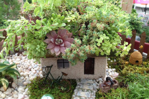 Garden Week in Georgia: Fairy Gardens Bring Year-Round Joy by RGC Blogger Lisa Ethridge