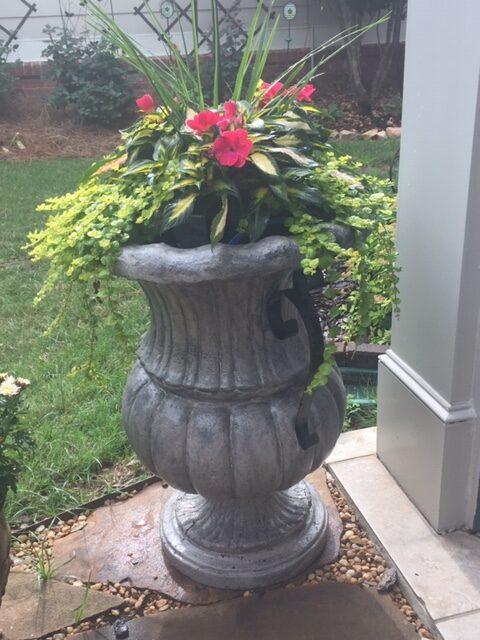 National Garden Week: Add Color in June by RGC Blogger Lisa Ethridge