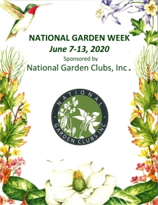 National Garden Week: Why Isn't My Annual Blooming?by RGC blogger Lisa Ethridge