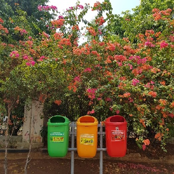 The Do's and Don'ts of Recycling by Guest Blogger & 1st Place High School Competition Winner Tara Goff