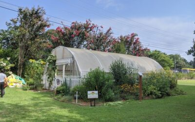 Community Gardening: The Gardens at the Center for Children & Young Adults, Part 1, by Guest Blogger Maureen Lok