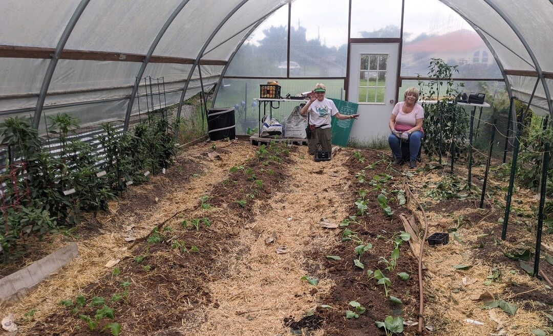 Community Gardening: The Gardens at the Center for Children & Young Adults, Part 2, by Guest Blogger Maureen Lok