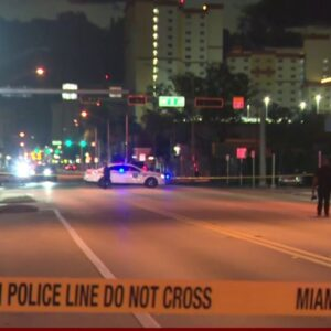 Woman struck and killed in early morning hit-and-run in Miami
