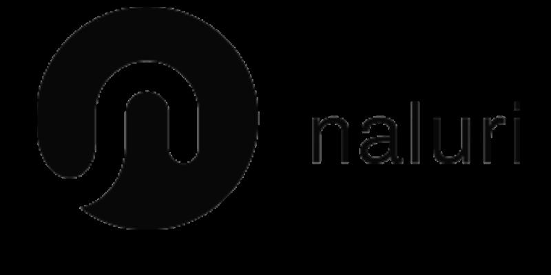 Naluri Logo 2