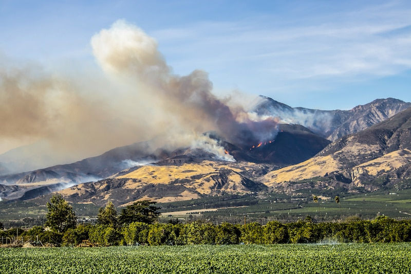 18 Tips to Prepare Your Home for Wildfire Season