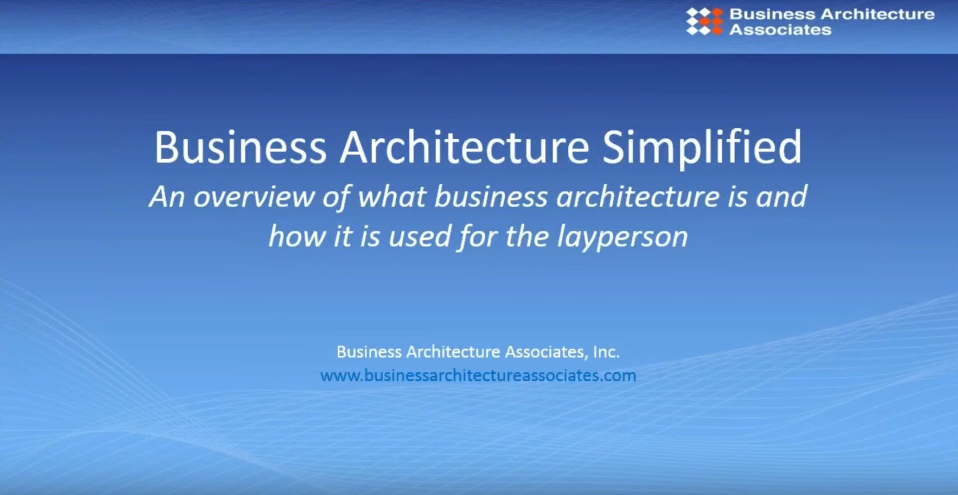 BIZ ARCH SIMPLIFIERED