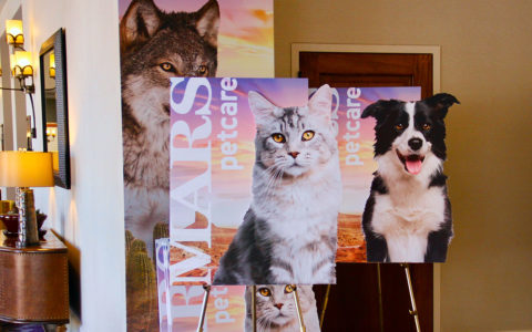 Mars Pet Show Easel Posterboards with Die-Cut collaboration with our agency partner MossWarner