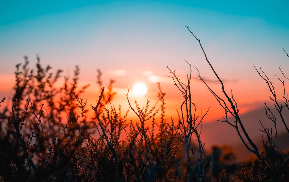 Photo of Sun rise