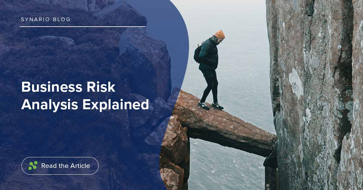 Business Risk Analysis Explained