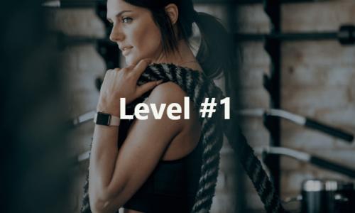 Fitness Level 1