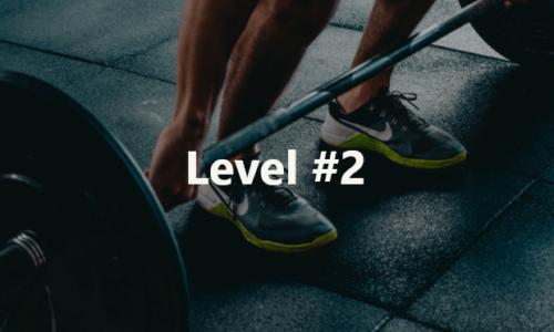 Fitness Level 2