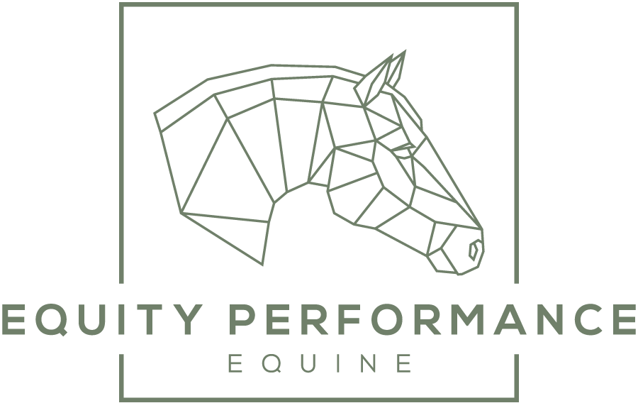 Equity Performance Equine