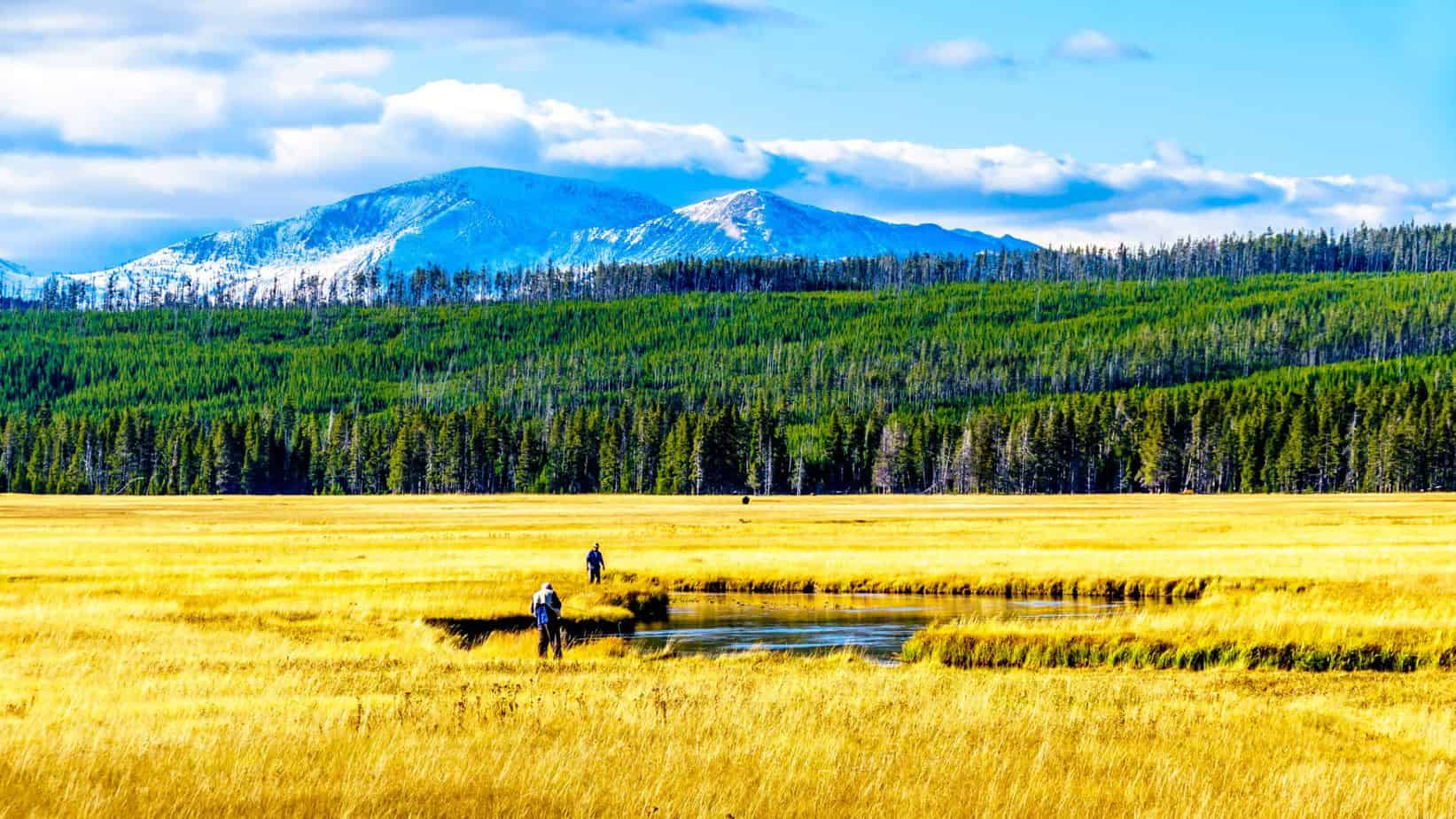 Best Fly Fishing Trips for Beginners