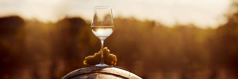 Top Chardonnay