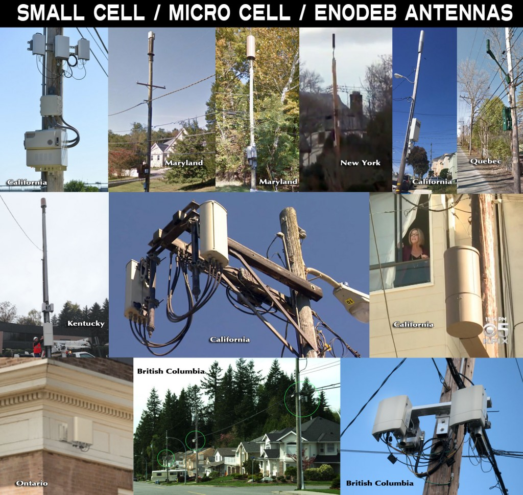 Small Cells 2017