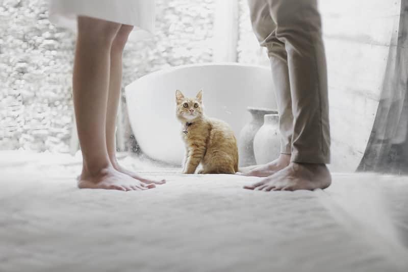 cat in between man and woman in bathroom