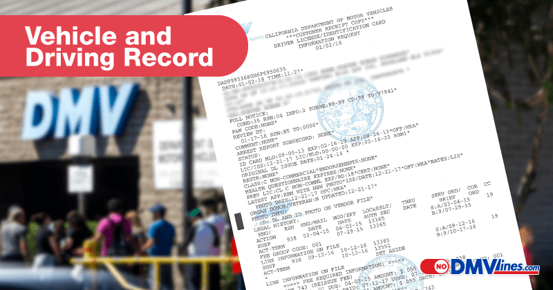 vehicle record license record mvr driving record