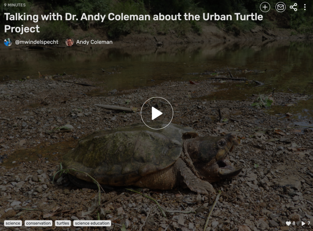 A talk with Dr Andy Coleman at the Urban Turtle Project