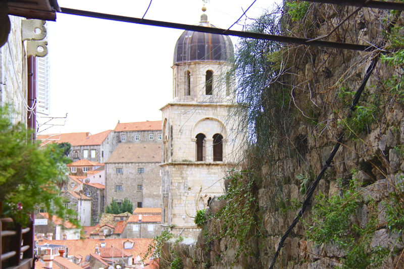 View of city roofs and the tower of the Franciscan Monastery