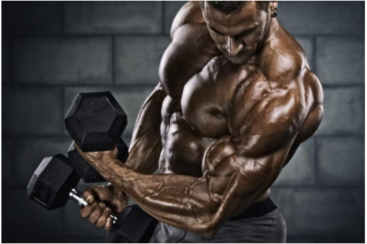 Testosterone Boosting Supplements – Select the Prior One for Growth