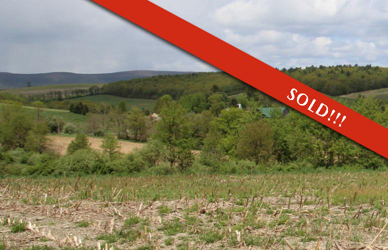 10 Acres Land in Unityville PA