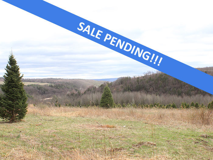 65 +/- Acres of Land