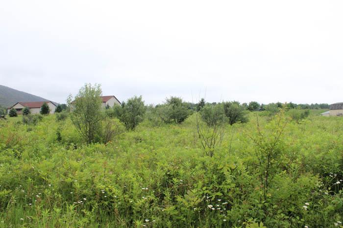 1.0 Acre Building Site
