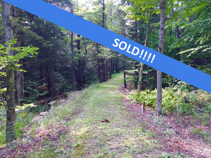 38 +/- Acres For Sale in Dushore