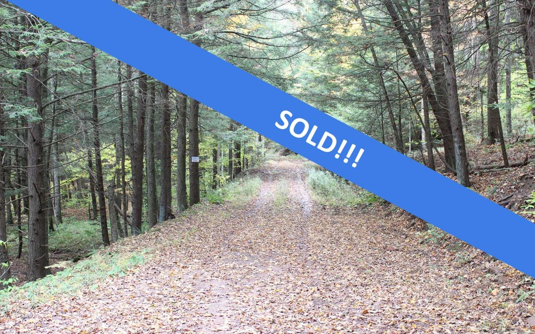 323+/- Acres of Land in Trout Run