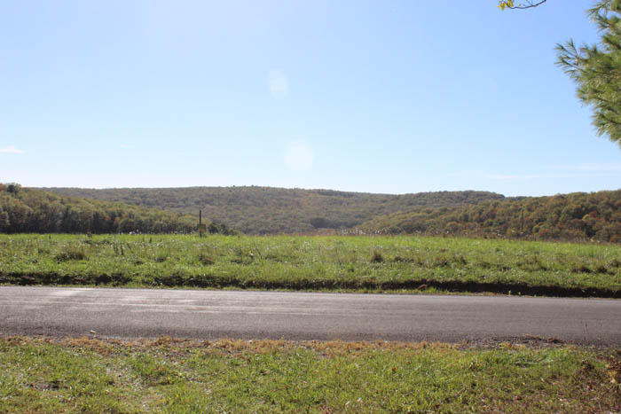 23 Acres Land in Benton