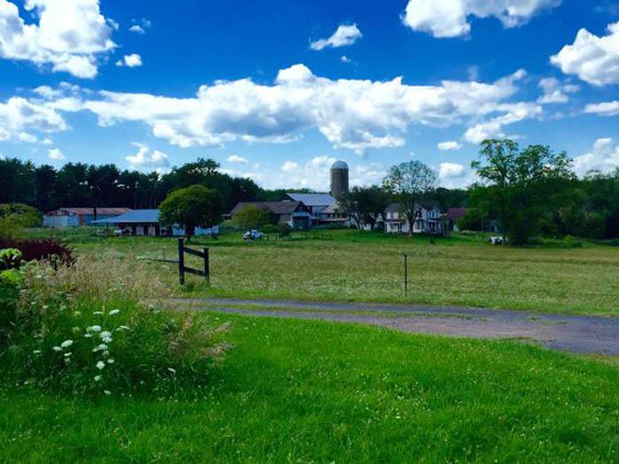 121+/- Acre Farm For Sale