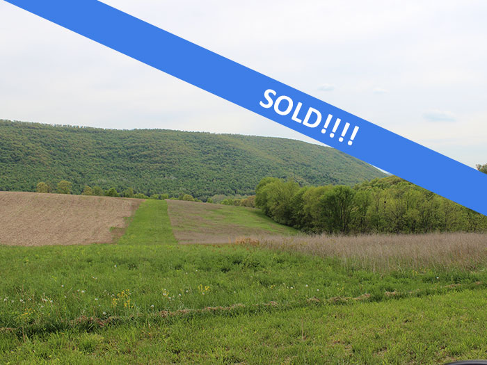 11 +/- Acres, Open/Wooded Land
