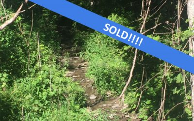 12 Acres Land for Hunting or Recreation