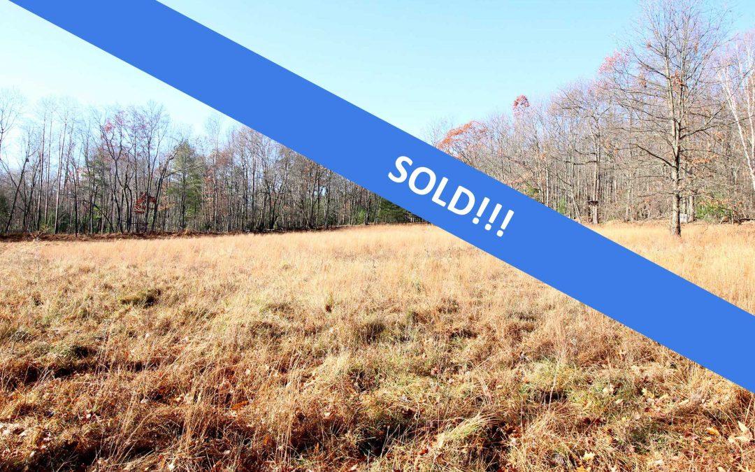 206+/- Acres Land in Williamsport