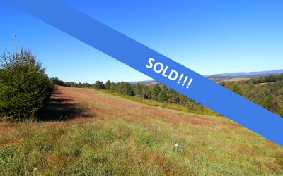 41 +/- Acre Tract of Land in Stillwater with Wildlife