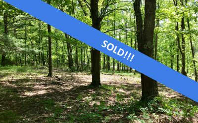 6.5 Acre Wooded Lot