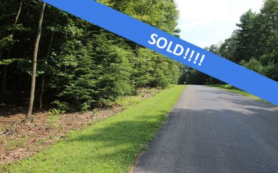 3.3 Acre Building Lot in Secluded Subdivision