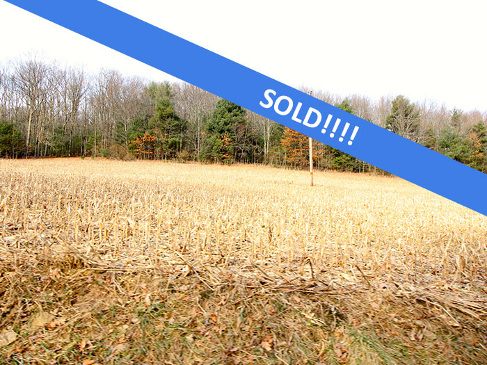 38+/- Acres of Land