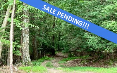 10 Acres For Hunting or Recreation