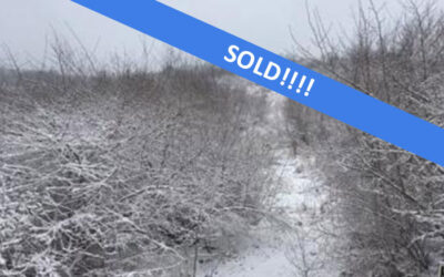 45 +/- Acres of Land