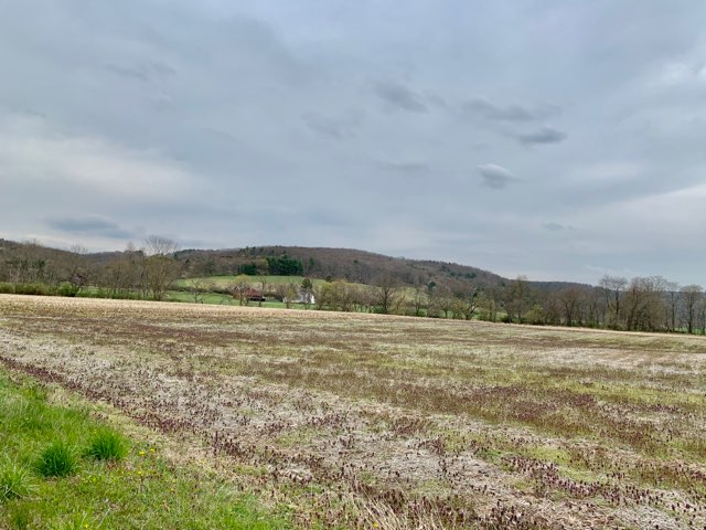 3 Acre Parcel with Visible Frontage