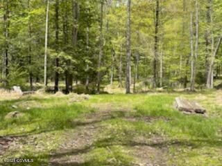 43 Acres Land Bordering State Game Lands