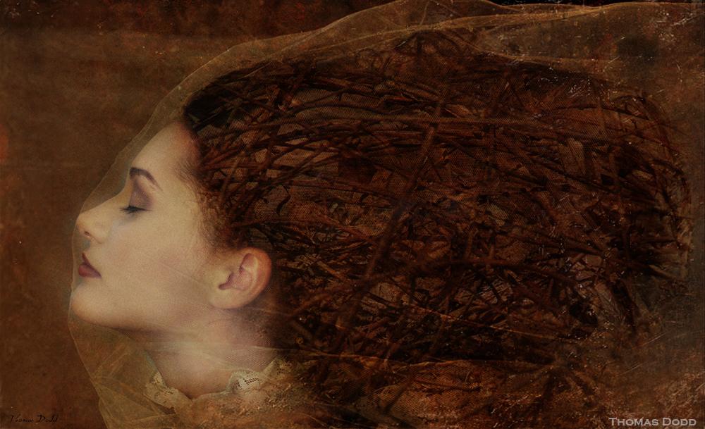 Behind The Veil by Thomas Dodd