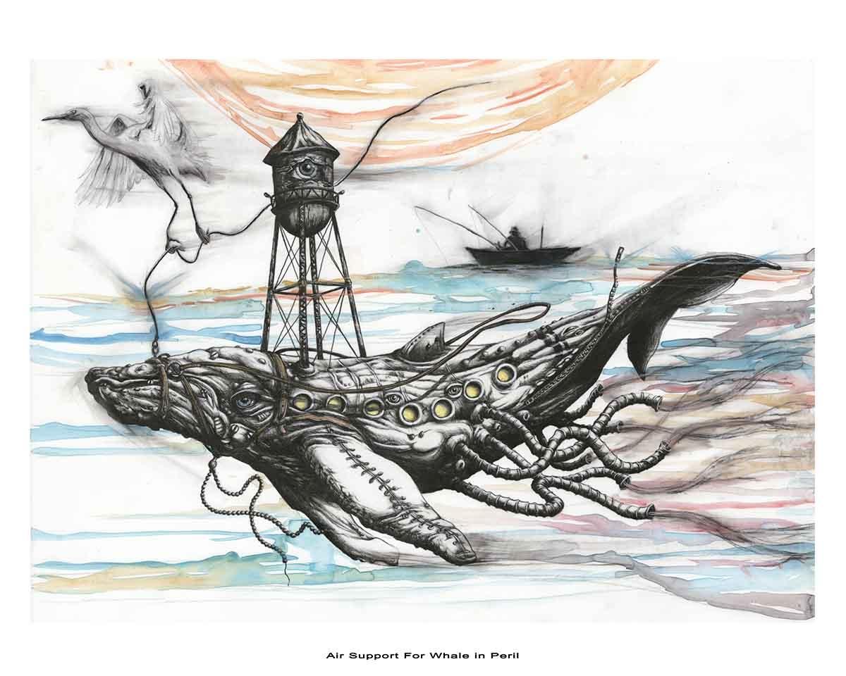 whale15WEB
