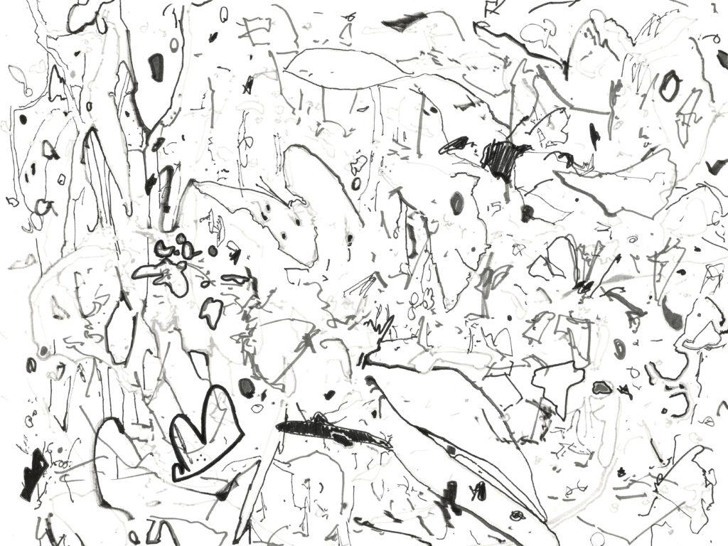 butterflyroom5