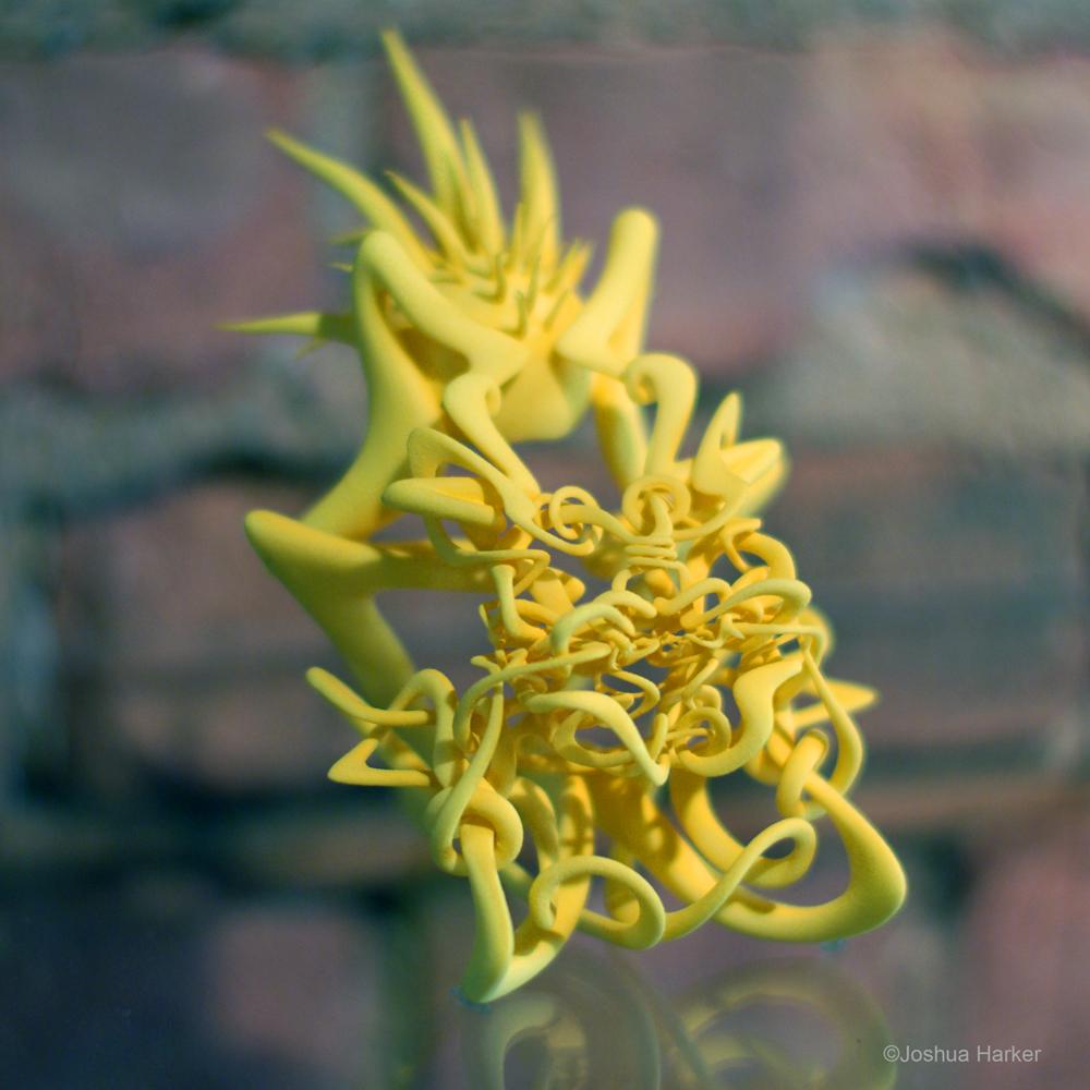 felonious-mirth-yellow_2